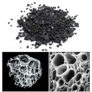 Vista microscópica del carbón activado